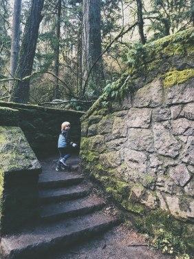 forestpark_thestonehouse